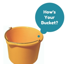 How'sYourBucket-